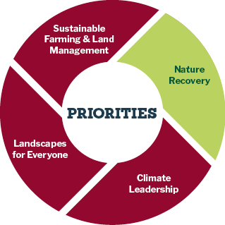 Pie chart showing the priorities of the recovery of nature